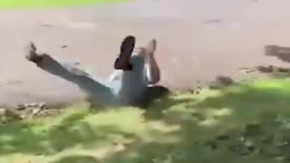 2021 New Best Funny Video Clips