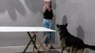 Dog Surprises Owners by Playing a Balloon Game