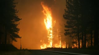 Raw video from earlier on the #HogFire along Highway 36.