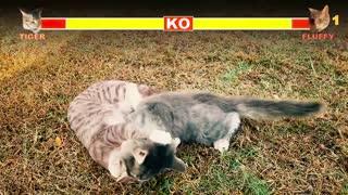 BATTLE CATS ARCADE