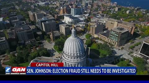 Sen. Johnson: Election fraud still needs to be investigated