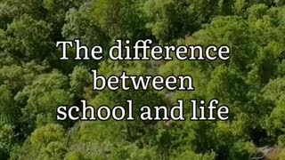 Difference between school and life
