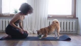 Fun Dog in Yoga Class