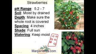 Gardening overview