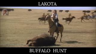 Lakota Buffalo Hunt