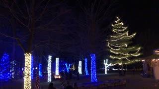 Christmas display with music