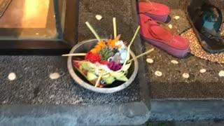 Bali Spirit Offerings