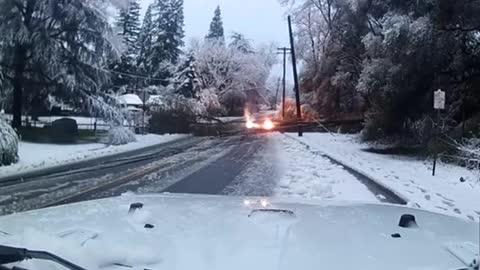 Falling tree brings down power line in California
