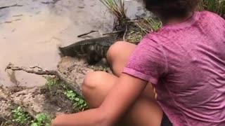 Feeding Baby Alligators