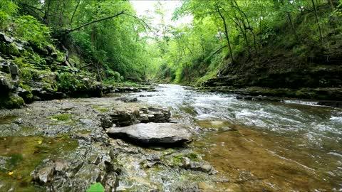 Creek Hiking - Arkansas