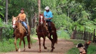 Nature horse riding