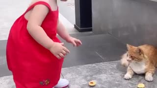 Cute baby playing with cat