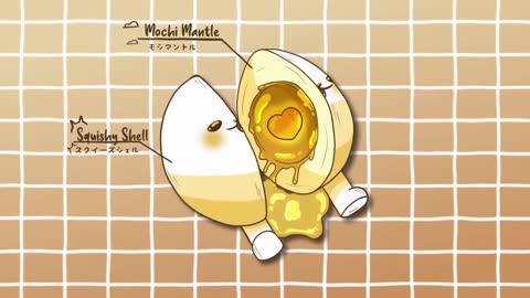 eggdog anatomy