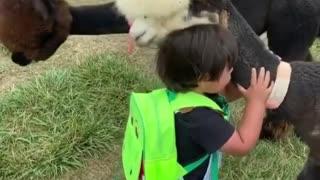 Children and animals,It's soooo cute