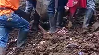 Deslizamiento de tierra en Cauca deja al menos 10 personas muertas