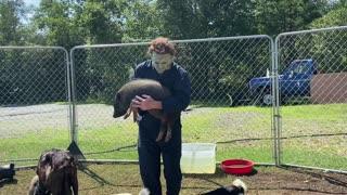Old Man Michael Myers Had A Farm