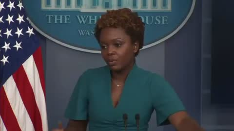 A reporter asks why doctors are not present in the White House briefing room