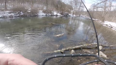 Spring Creek Winter Trout Fishing Round 2