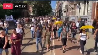Demonstrators Peacefully March in Amsterdam Against COVID Passports