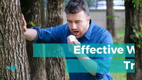 Effective Ways To Treat Hay Fever