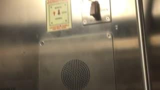 Bug near manual button subway train door