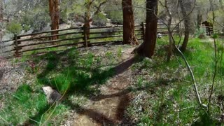 04-18-20 Part 2 - Ride with Marcie towards Gateway, CO.