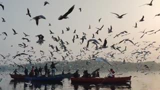 fishermen appreciate the presence