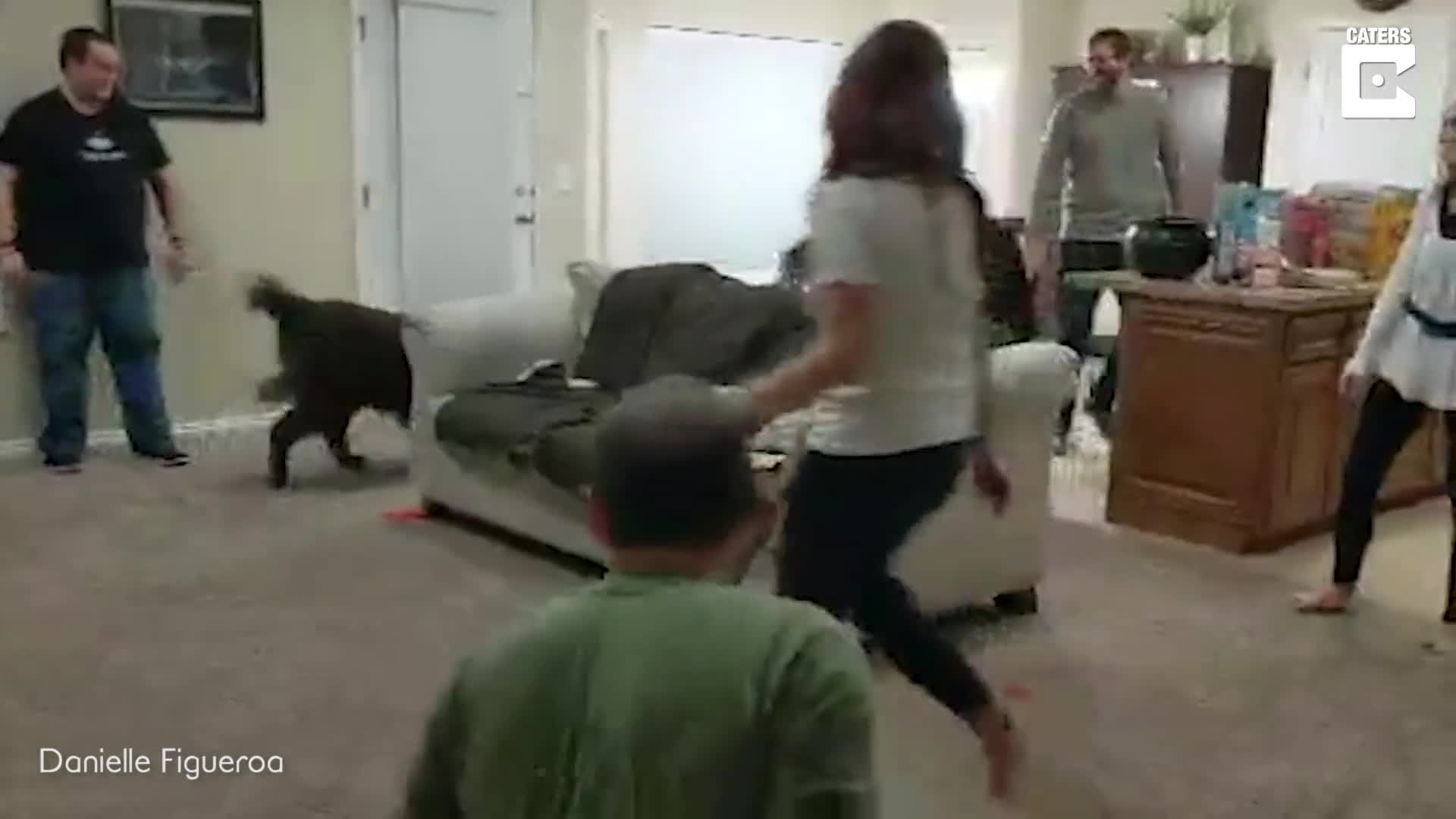 CREATIVE FRIENDS DESIGN HILARIOUS PARTY GAME USING BALLOONS AND DOG