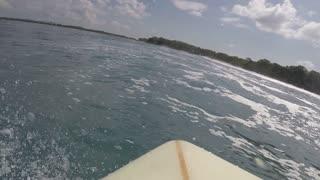 Surfing bra