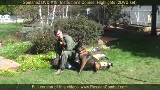Defense against dog attacks Pt 1