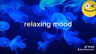 Meditation music 2021