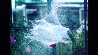 video in slow motion