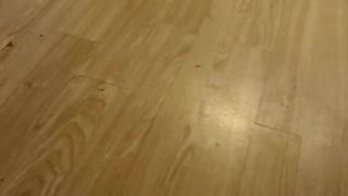 Gracie Plays Fetch