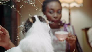 A Woman Petting A Cat While Having Tea
