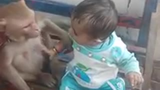 Baby playing with monkey