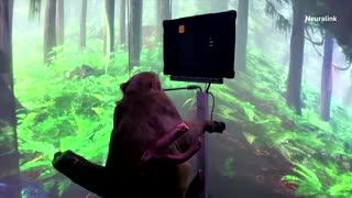 Neuralink video shows monkey gaming via brain chip