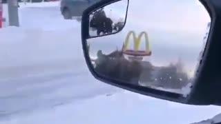 Moose alaskan traffic