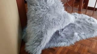 Giant Fluffy Monster!