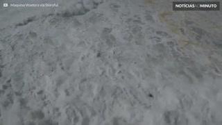 Drone mostra resgate dramático de Pedro Scooby em Nazaré