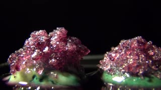 Wow - Time Lapse Video of Crystals Growing