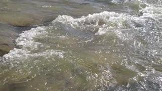 Beautiful creek with rapids
