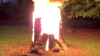 Burning my tree stump