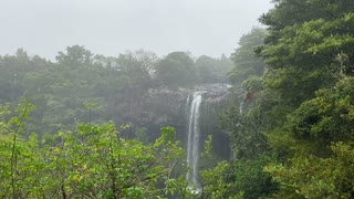 Relaxing soothing waterfall in New Zealand on a wet foggy day