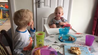 3 Year old teaching his little baby brother French