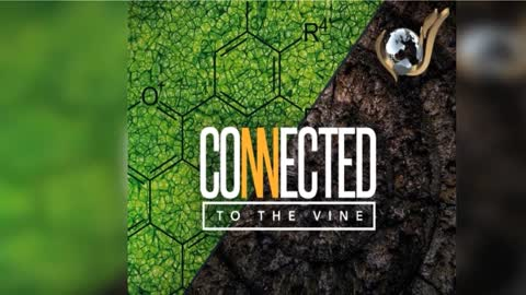 Connected To The Vine by Evangelist Nathan Morris - Sermon Preview