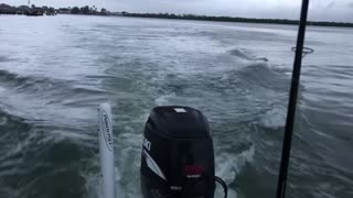 Dolphins riding our wake