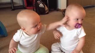 Peleas de bebés