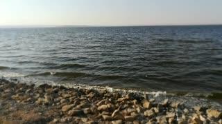 Adorable Beach View In Qarun lake Sunny Water