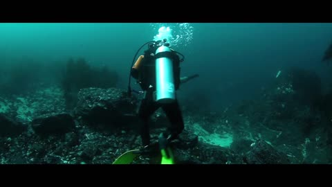 Diver Explores Underwater Where He Found Hundreds Of Fishes Around Drawn Ship !!!