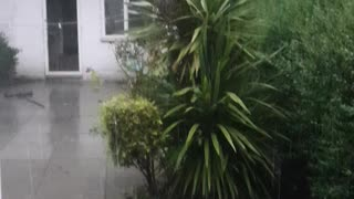 ASMR Sounds of Heavy Rain and Thundering after Hot Humid Weather UK